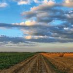 A guide to NetZero farming in 2021.
